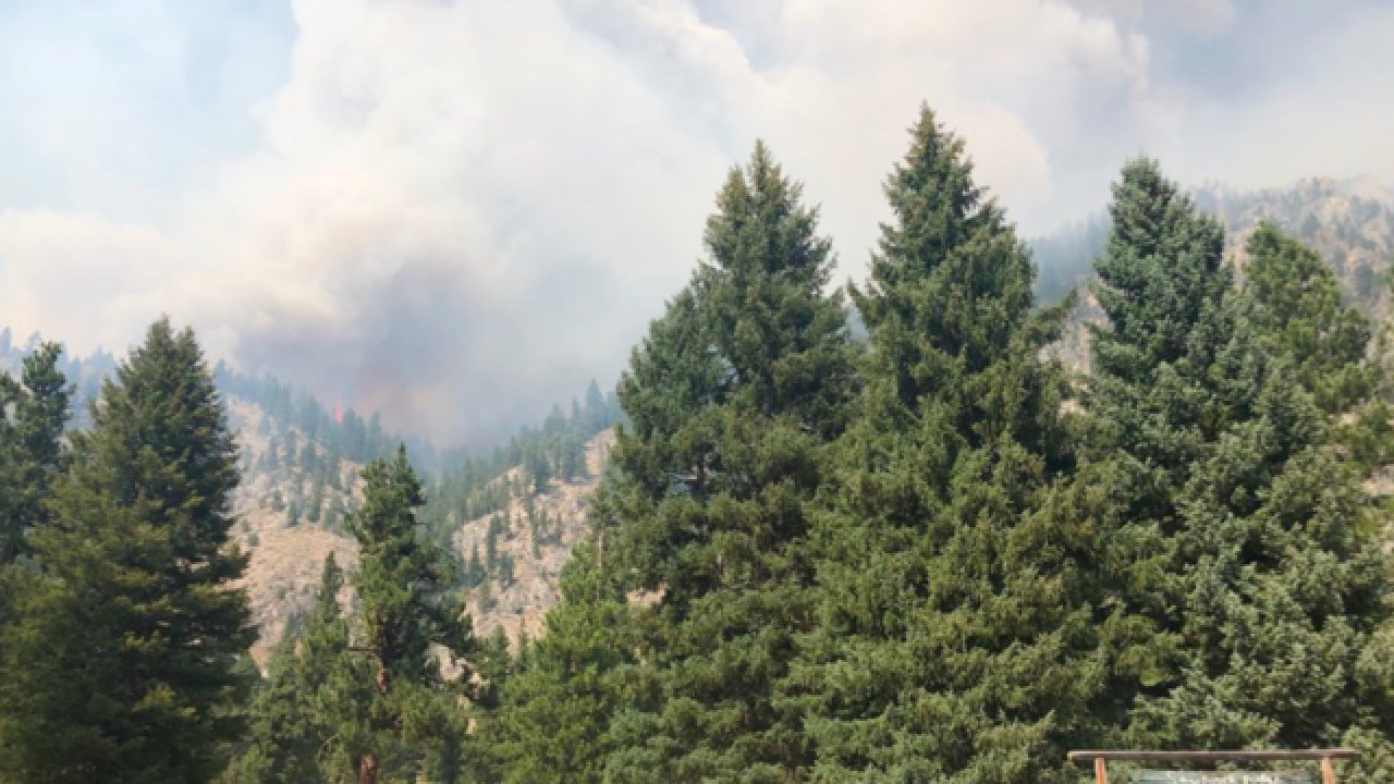 Evacuations underway for 1,200 acre wildfire