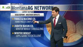 Montana Ag Network Weather: May 21st