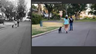 web for video of white woman trailing Black man.JPG