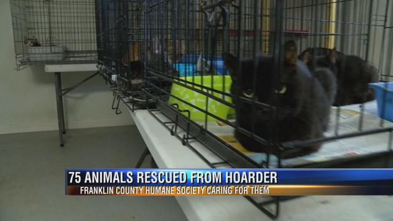 Franklin County Humane Society at Capacity After Rescuing 75 Animals from Hoarding