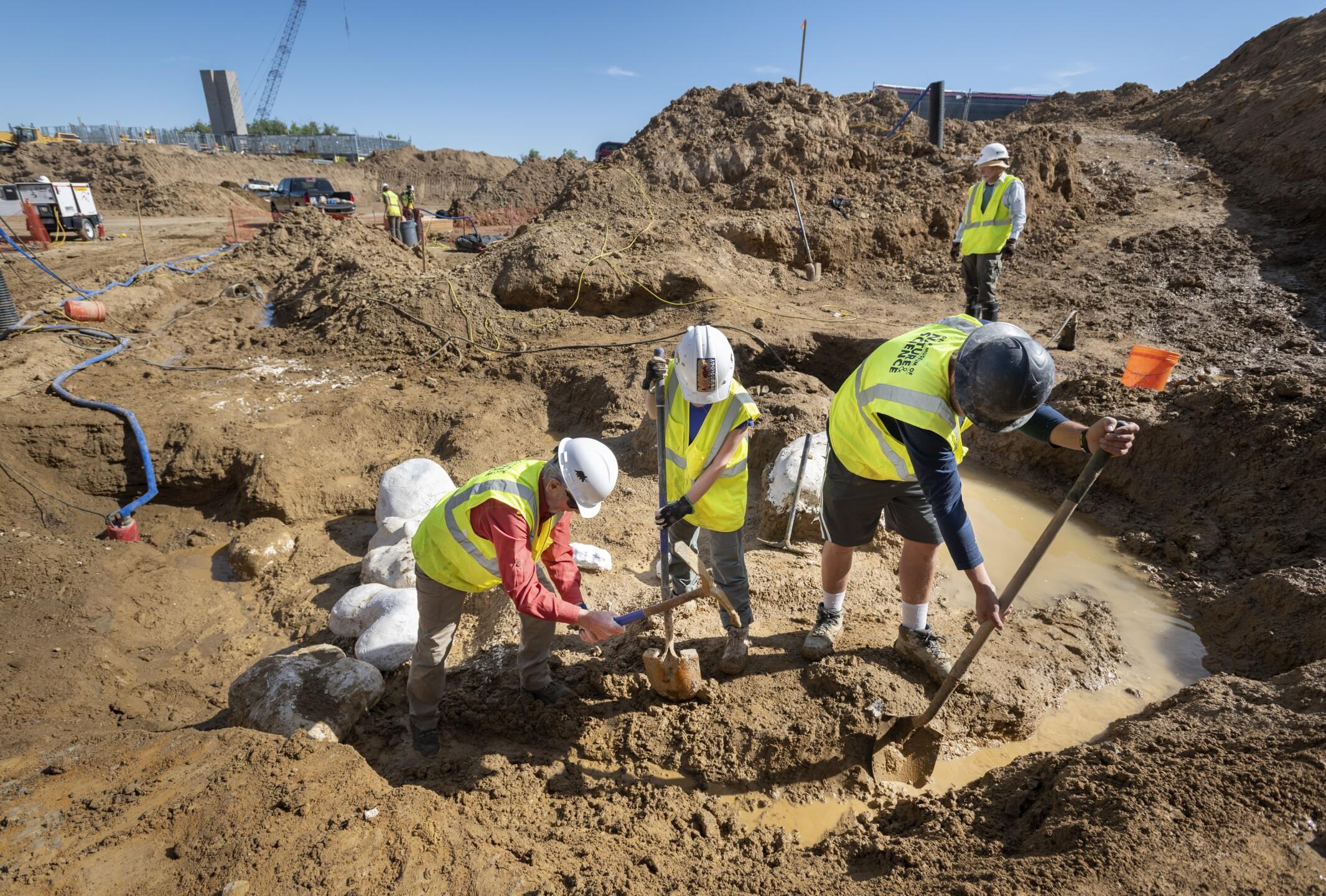 Highlands Ranch dino excavation 7