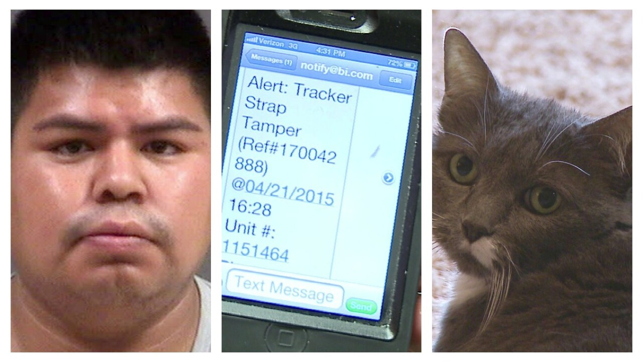 Drug suspect foils Chesterfield authorities by putting GPS monitor on cat