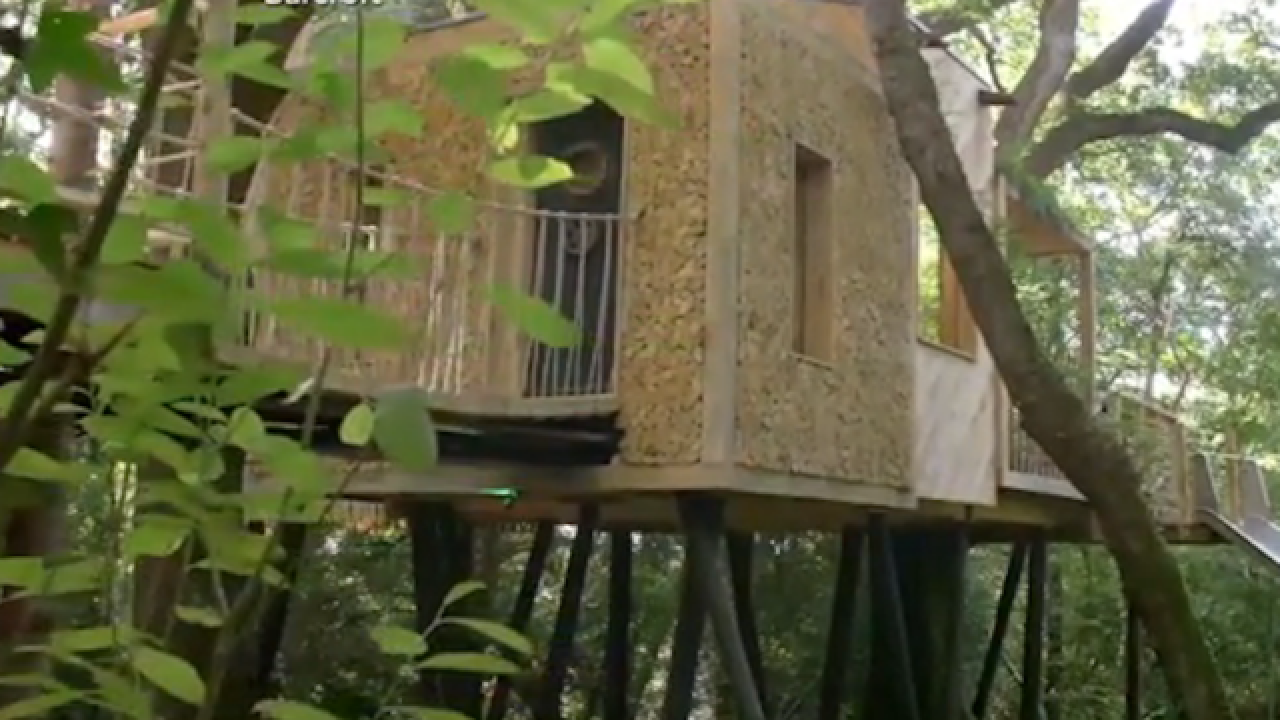 Look inside this luxurious $200K treehouse
