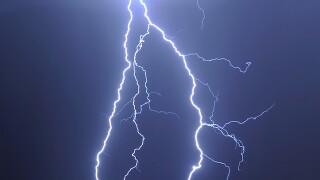 Florida man survives lightning strike, spider, snake bites