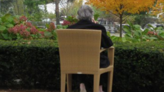Elderly man sits in chair and looks at nature