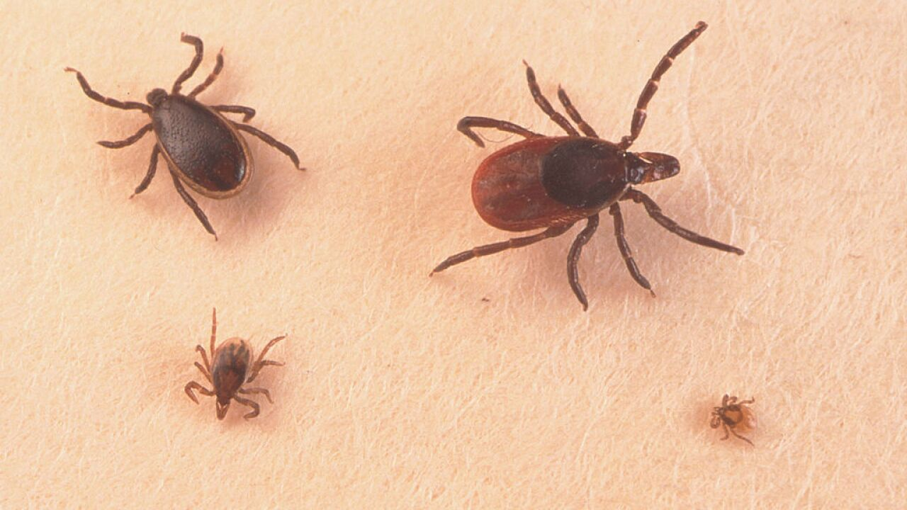 House of Representatives orders Pentagon to investigate whether ticks were once used as biological weapons