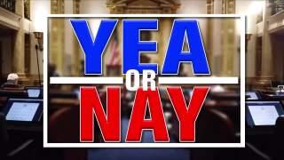 Yea or Nay?! with Matt and Ryan