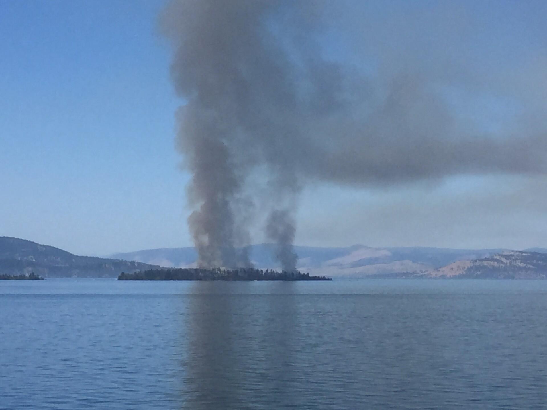 bird island fire 3.jpg