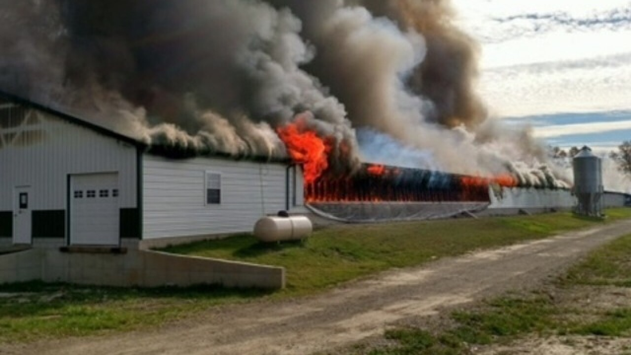 22,000 chickens die in NE Ohio barn fire