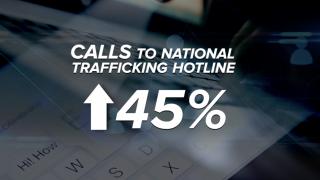 human trafficking increase