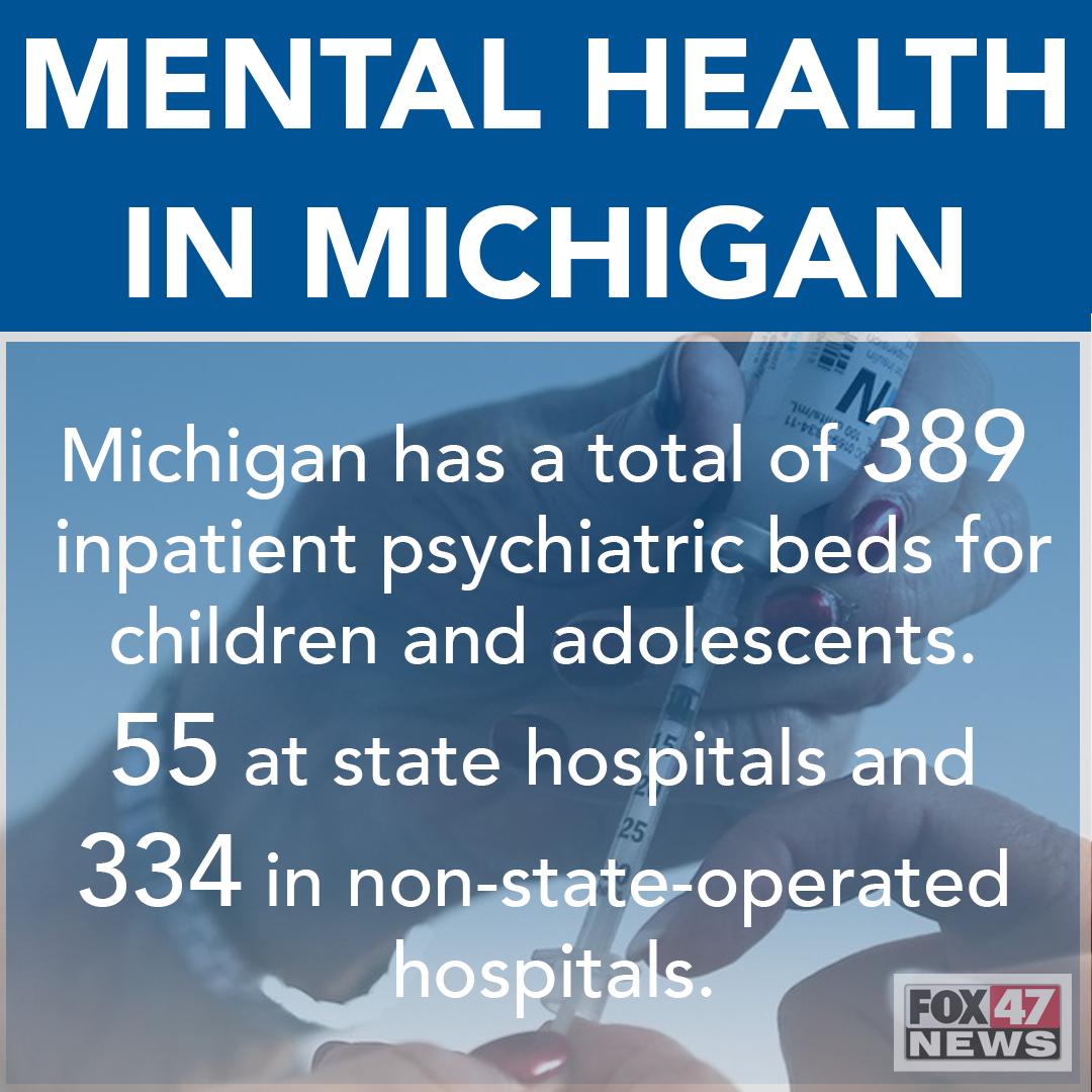 Michigan's Mental Health Stats