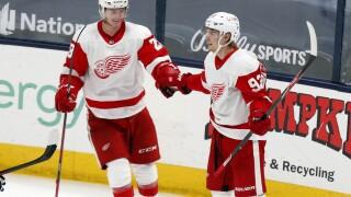 Gustav Lindstrom, Vladislav Namestnikov Red Wings Blue Jackets Hockey