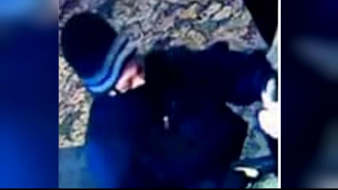 Bigfork Armed Robbery Suspect.jpg