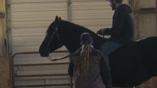 Program near Billings aims to help veterans through horses