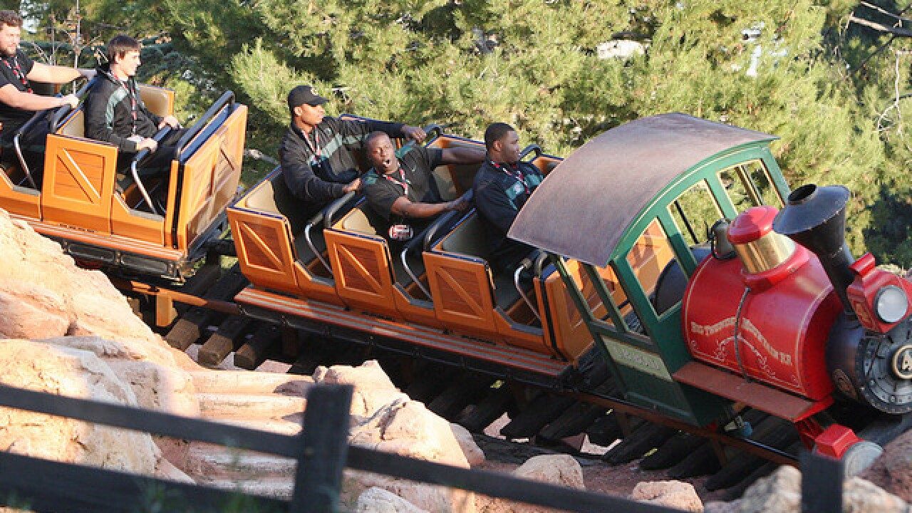 Disney World's Big Thunder Mountain Railroad can help pass kidney stones, study claims