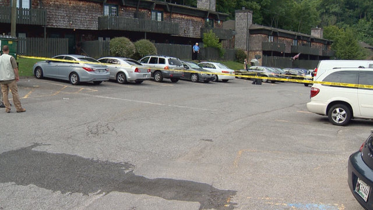 Man Shot, Killed After Robbery In Bellevue
