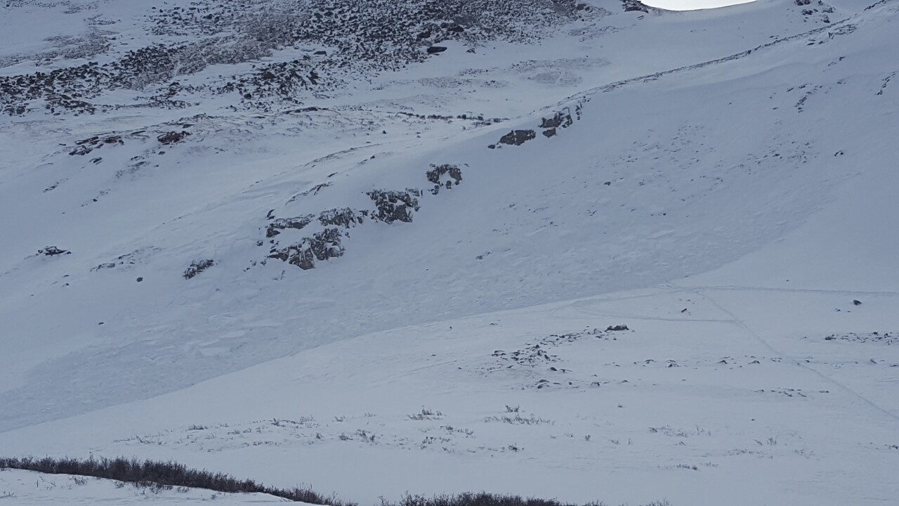 Skier buried by avalanche, rescued from Colorado mountain