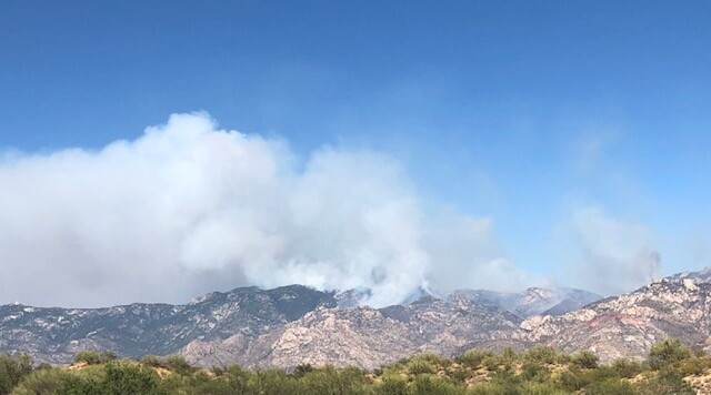 The Bighorn Fire in the Catalina Mountains as seen from Naranja Park