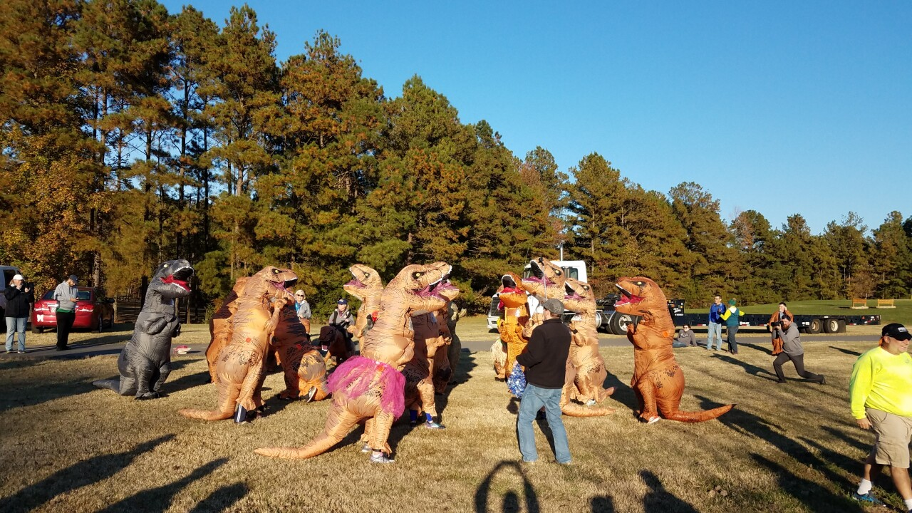 Terror of T-Rexes gallop for good cause at Henricopark