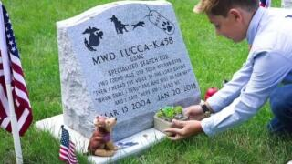 10-year-old spends pandemic collecting golf balls, sells them to benefit Michigan War Dog Memorial