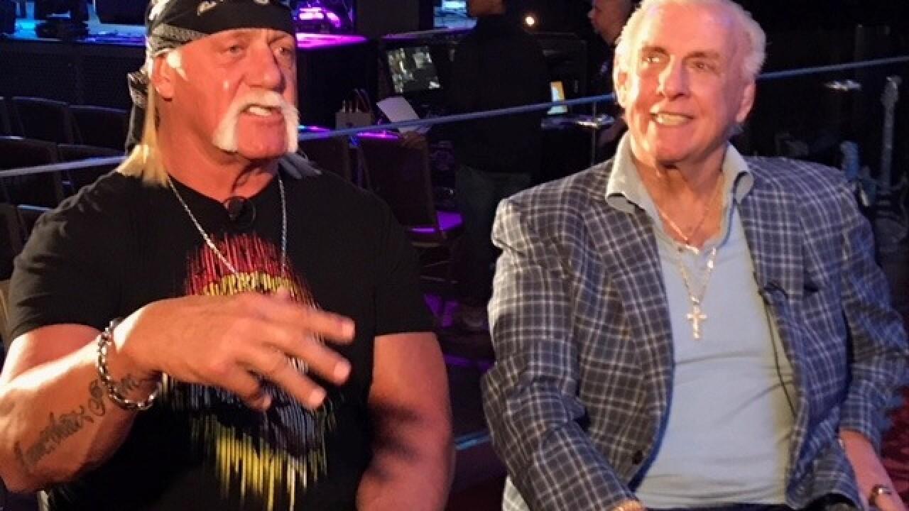 Could Hulk Hogan return to wrestling?