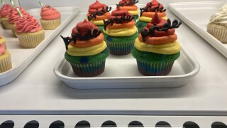 Rainbow pride cupcakes at All Tied Up Floral Cafe