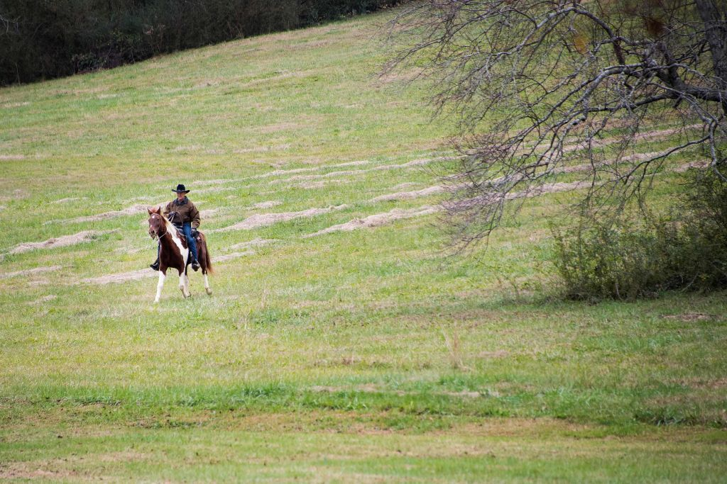 Photos: Roy Moore rides a horse to the polls —again