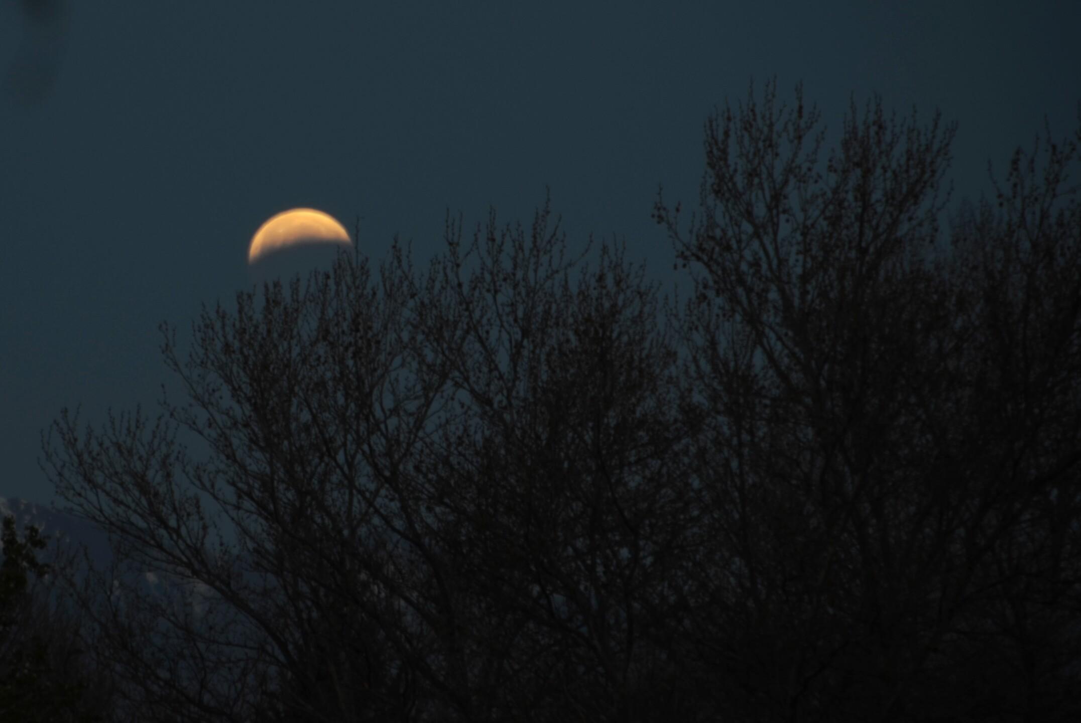 Photos: Utahns capture photos of 'blood moon' Saturday; event is shortest total eclipse ofcentury