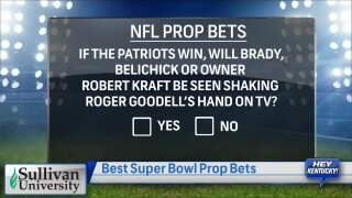Best Of The Super Bowl Prop Bets