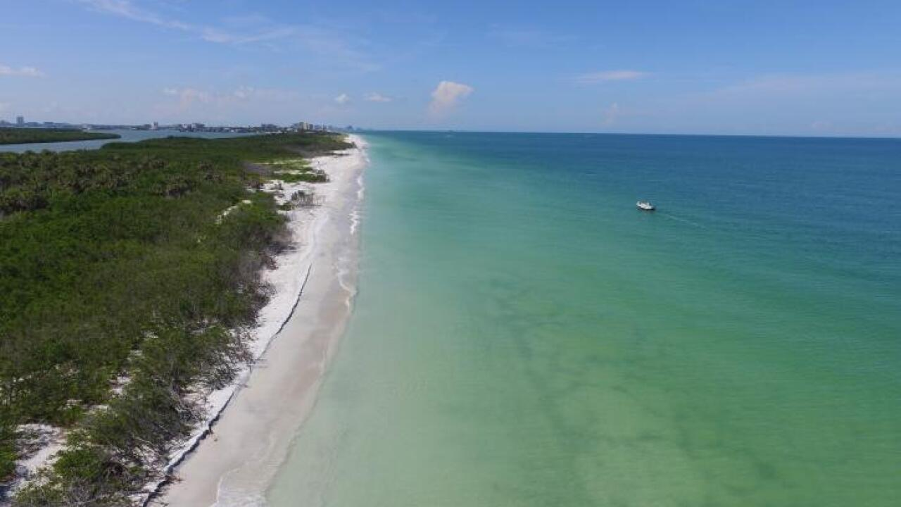 Florida State Parks - Caladesi Island State Park 4.jpeg