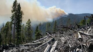 state creek fire 1
