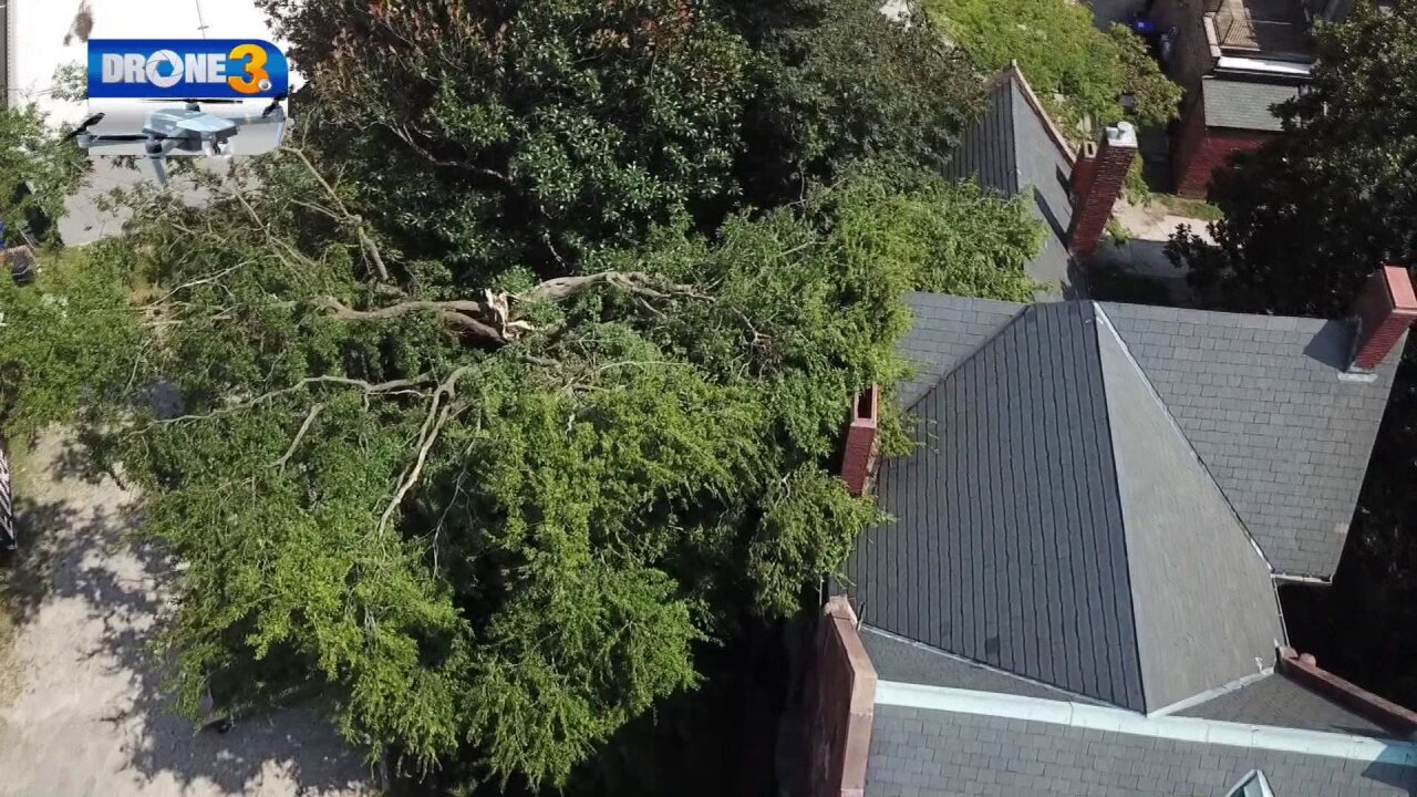 Hunter House museum reopens after 200-year-old oak tree falls on property
