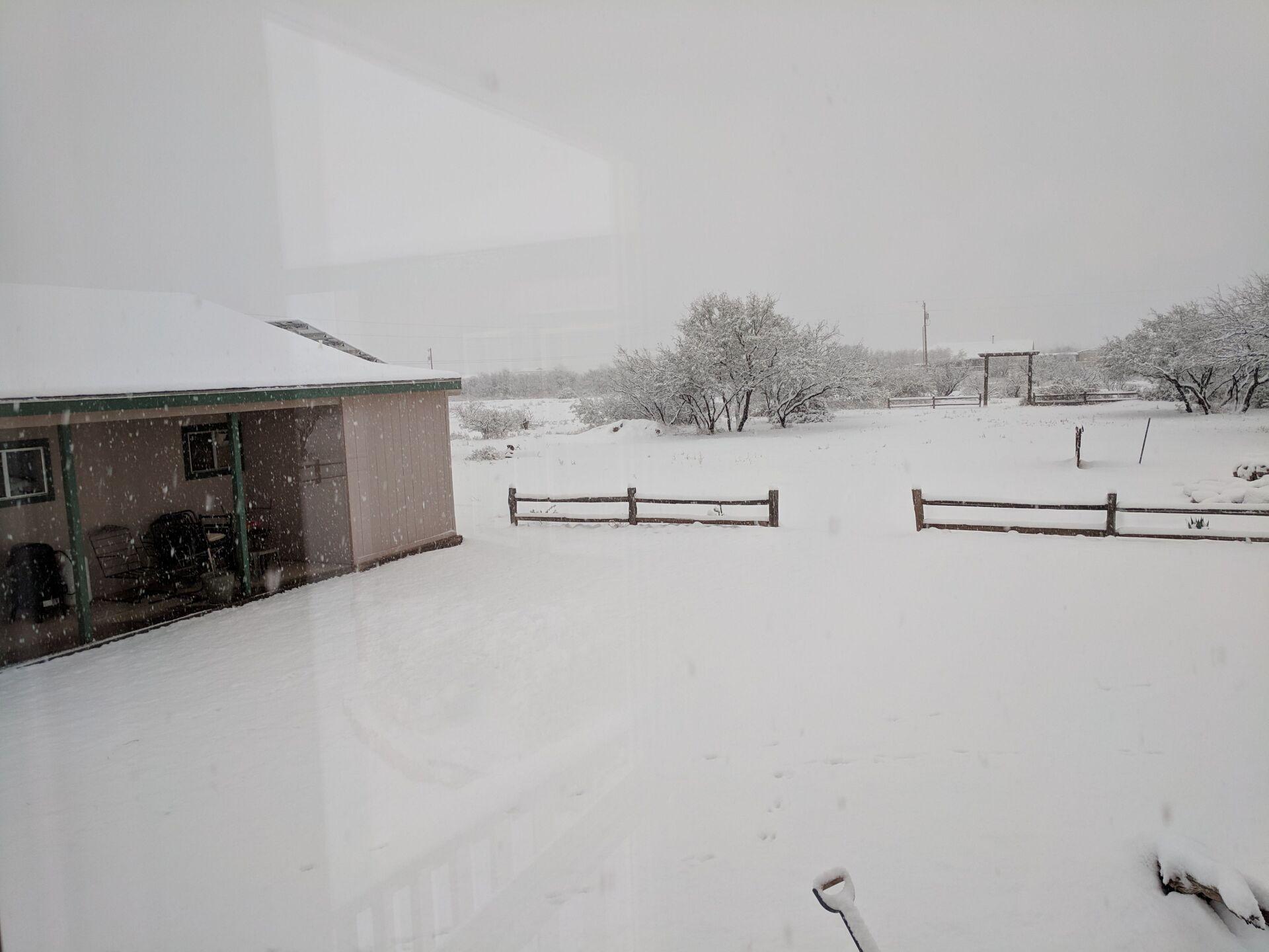 Ted - Snow in Whetstone.jpg