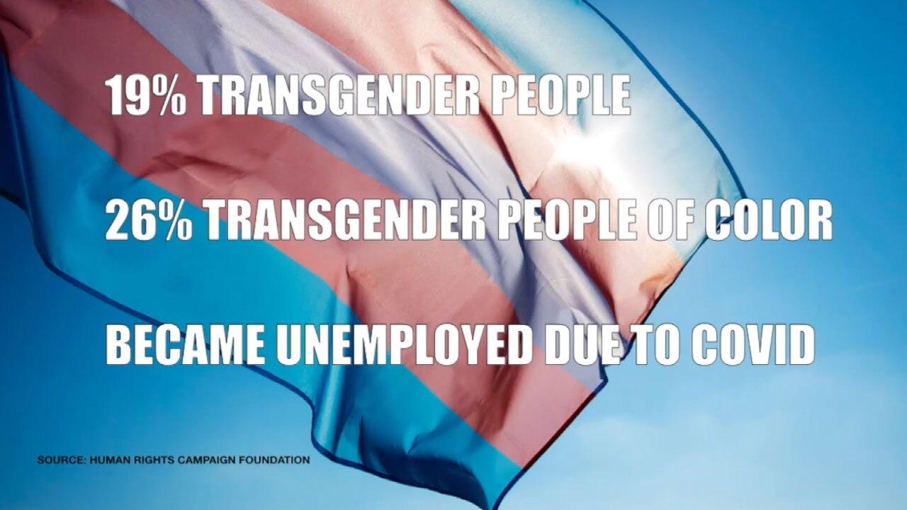 Transgender employment stats