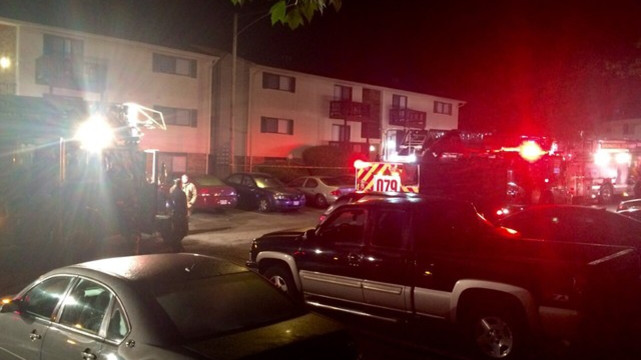 Fatal apartment fire kills mother, son
