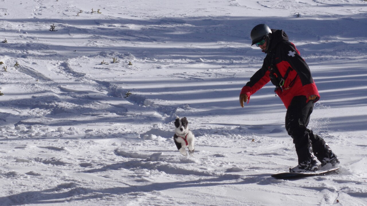 Bandit Loveland Ski Patrol 6.jpg