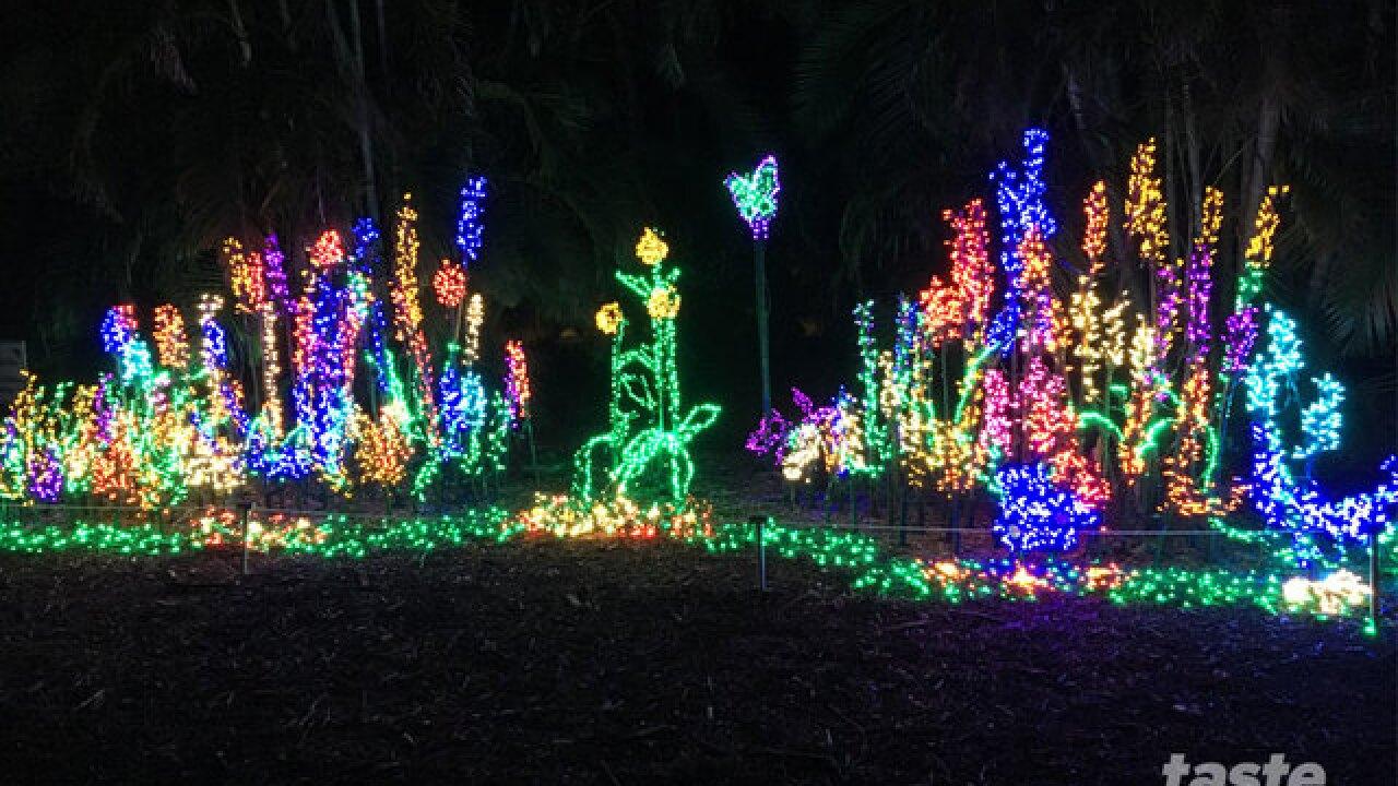 St. Lucie mom loves unique holiday illumination