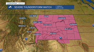 Severe thunderstorm WATCH issued for several counties in SW Montana
