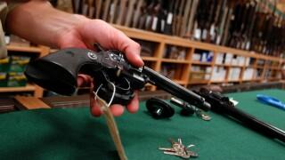 Gun file image