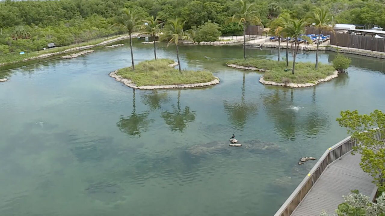 EcoCenter at Florida Oceanographic Society