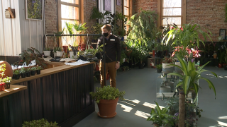 New plant shop in Massillon offered as safe, inclusive spot for local community