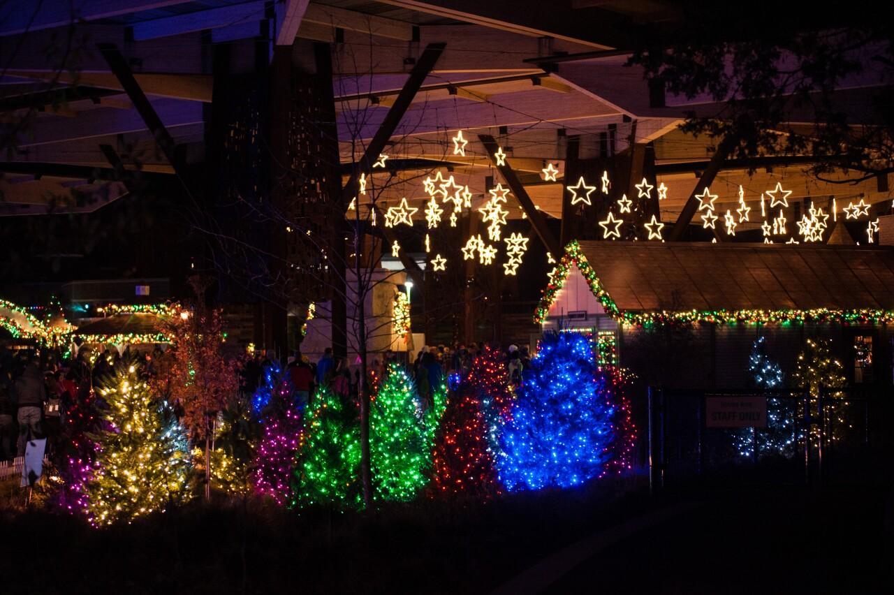 Lights in Pavilion2-Erik Markov.jpg