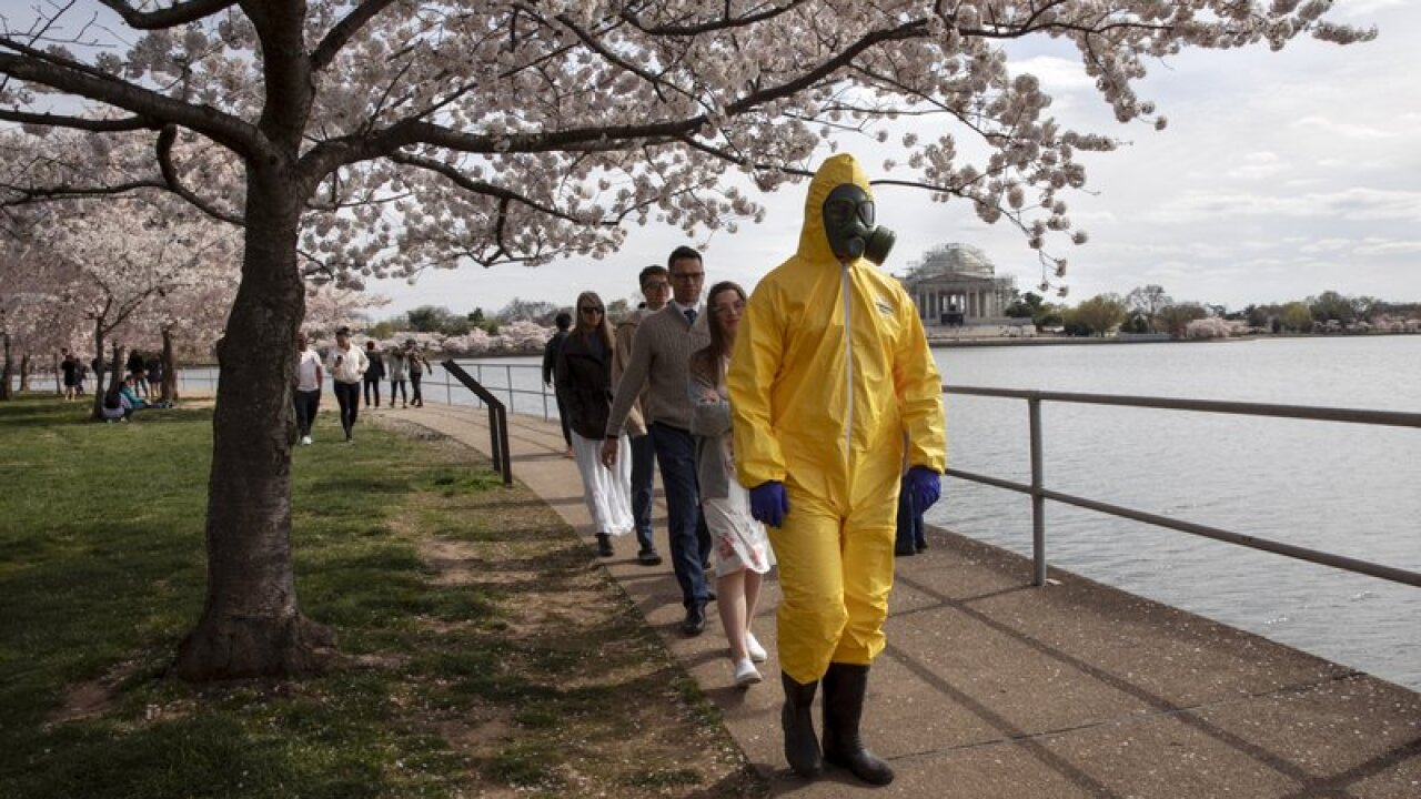 Nations's capital trying to keep crowds from cherry blossoms