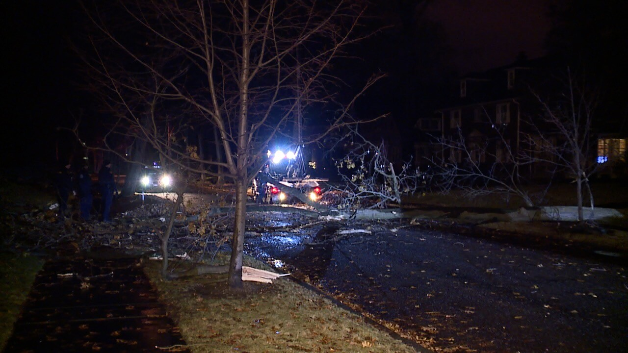 Cleveland Hts tow trees 3.jpg