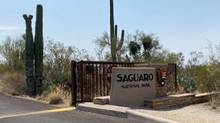 Saguaro National Park Rincon District