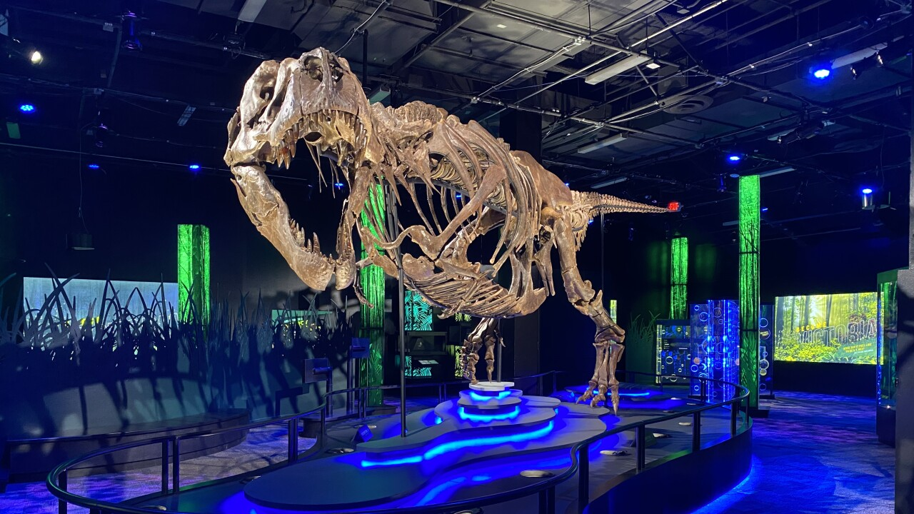 Victoria the T Rex Arizona Science Center