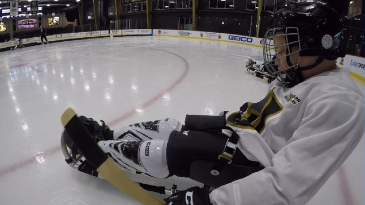New youth sled hockey program hits City National