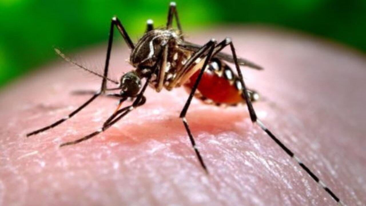 Cincy ranked 11th most mosquito infected city
