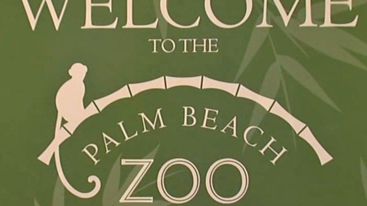 Shotguns stolen from Palm Beach Zoo