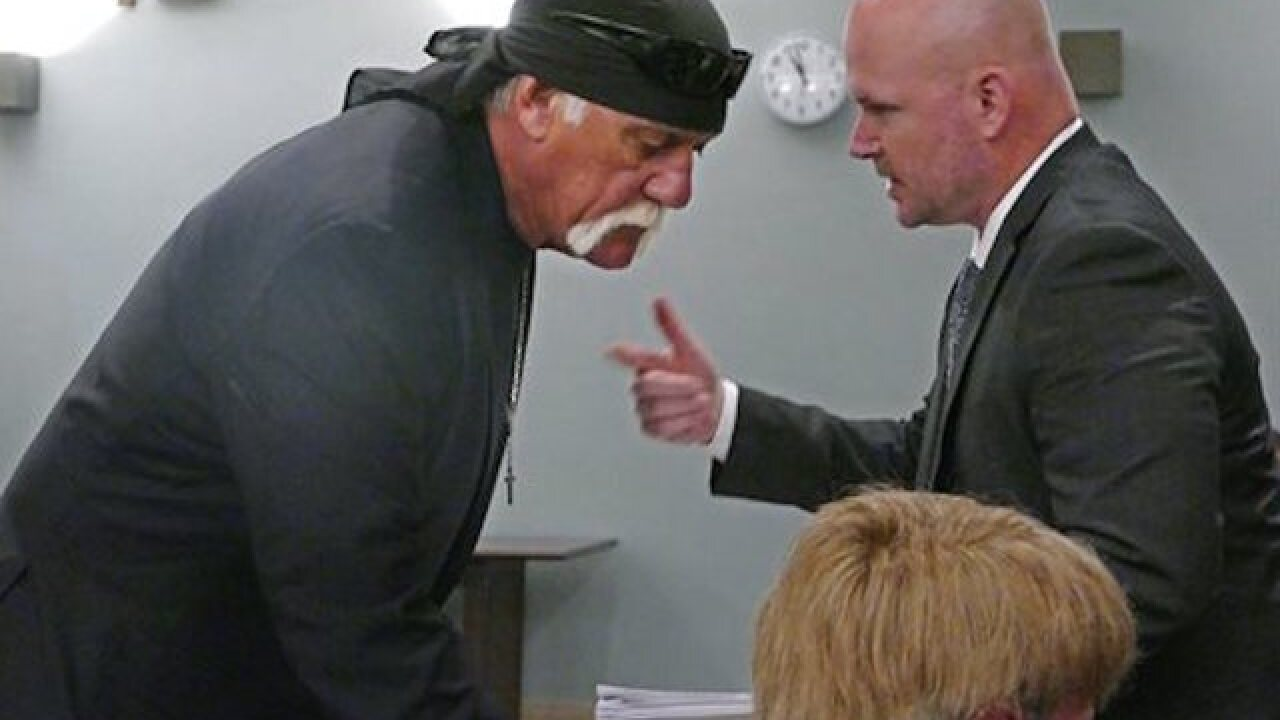 Hulk Hogan has billionaire in his corner